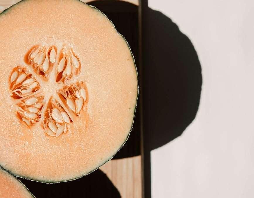 Celebrating Melon Season