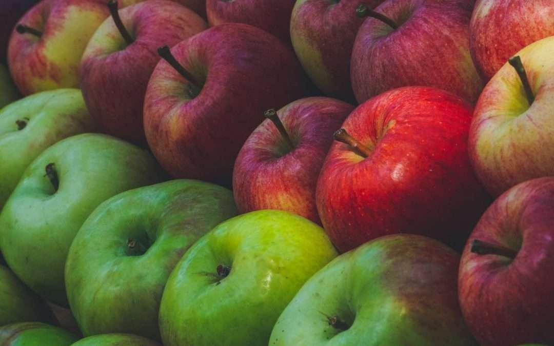 Seasonal Spotlight: Apples!